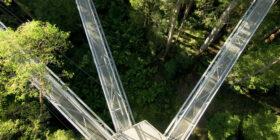aerial shot of three bridges in the woods