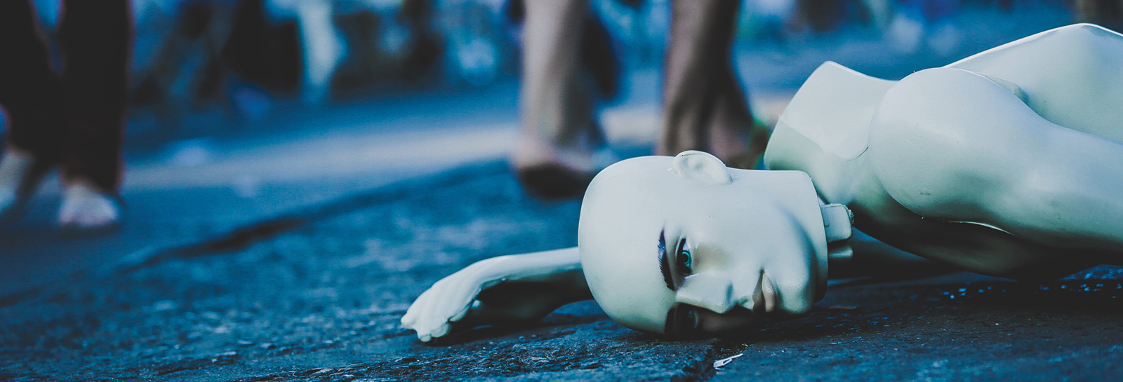 manakin on the ground broken